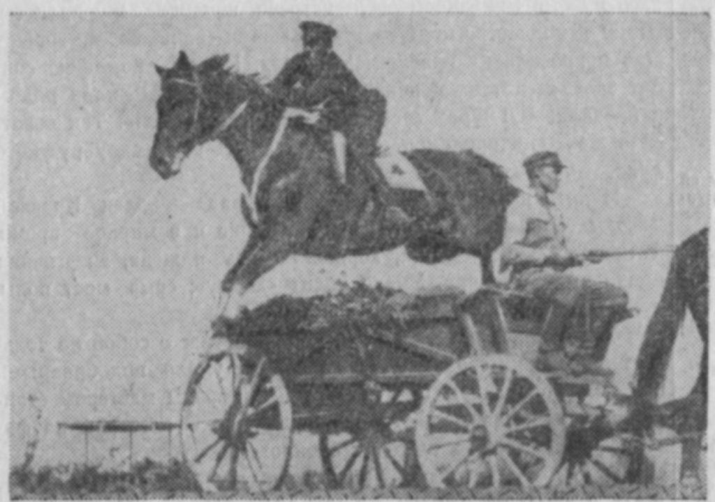 """В. Лобачев на коне """"Демон"""" выполняет упражнение для офицеров на соревнованиях в Новочеркасске в 1936 году - """"Прыжок через бричку"""""""
